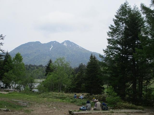 画像11: 6月20日から山旅会 「尾瀬ヶ原から尾瀬沼」 ツアーに行ってきました!