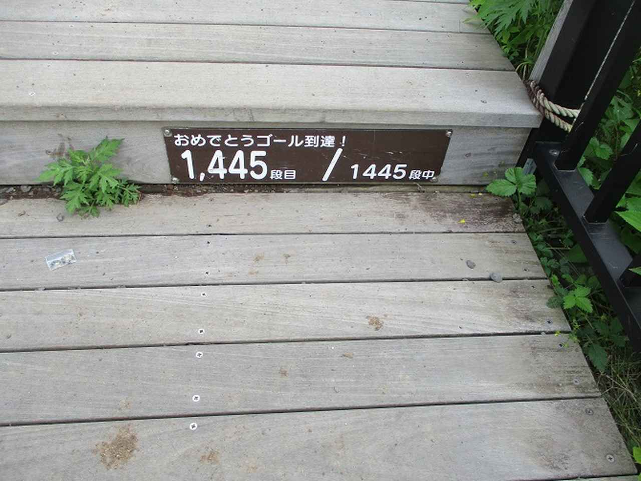 画像6: 6月28日に山旅会 「丸山」 ツアーに行ってきました!
