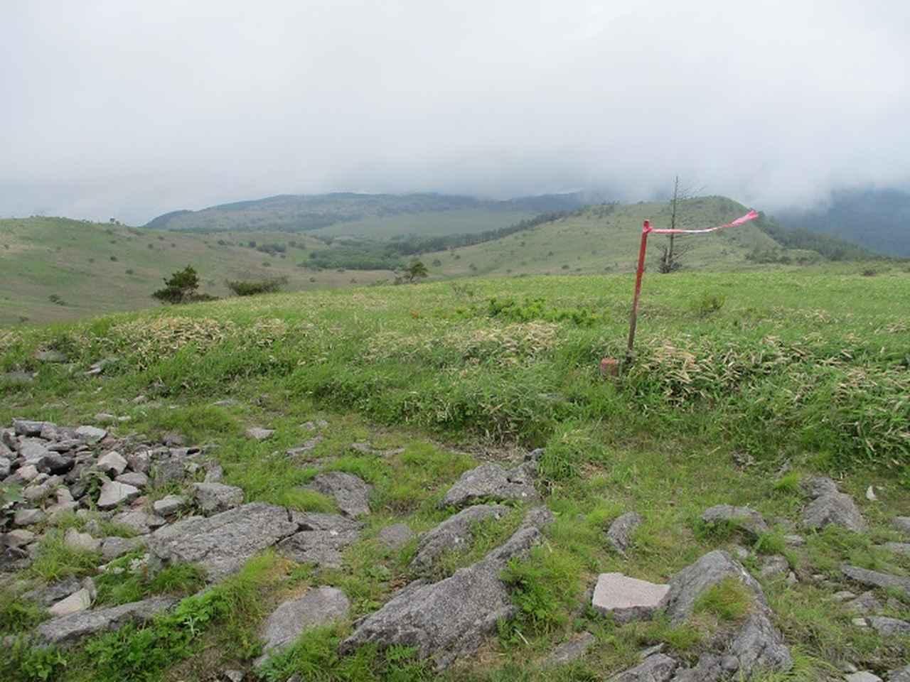 画像7: 7月の山旅会 「男女倉山」 ツアーの下見に行ってきました!