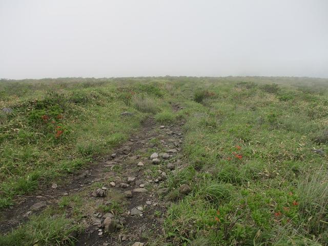 画像4: 7月の山旅会 「男女倉山」 ツアーの下見に行ってきました!