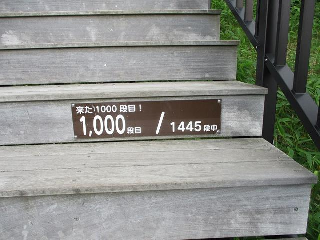 画像5: 6月28日に山旅会 「丸山」 ツアーに行ってきました!