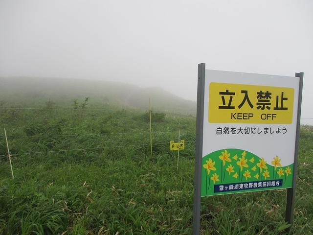 画像1: 7月の山旅会 「男女倉山」 ツアーの下見に行ってきました!