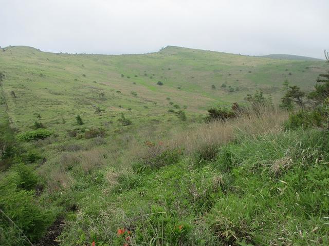 画像8: 7月の山旅会 「男女倉山」 ツアーの下見に行ってきました!