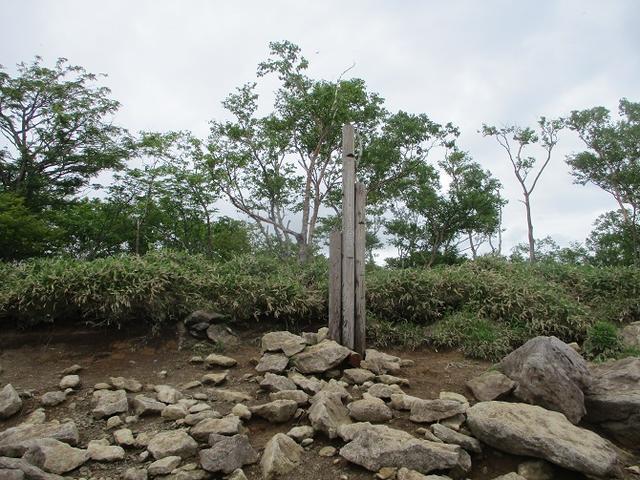 画像7: 6月28日に山旅会 「丸山」 ツアーに行ってきました!