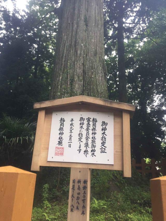 画像5: 富士山すそ野ぐるり一周ウォーク 第5回をご紹介します!