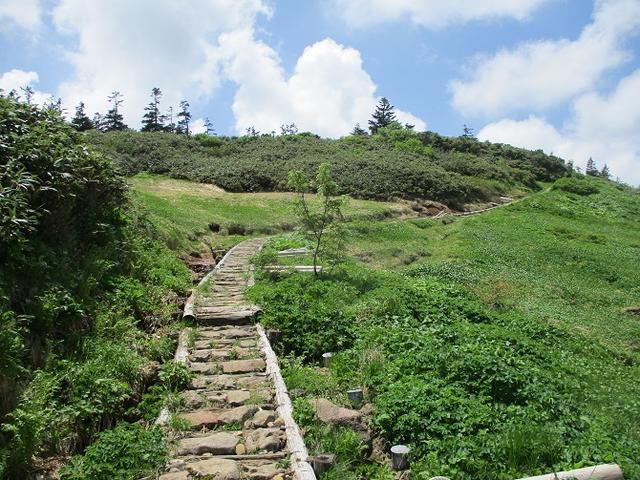 画像5: 7月の山旅会「八幡平・八甲田山・森吉山」のツアーの下見に行ってきました!