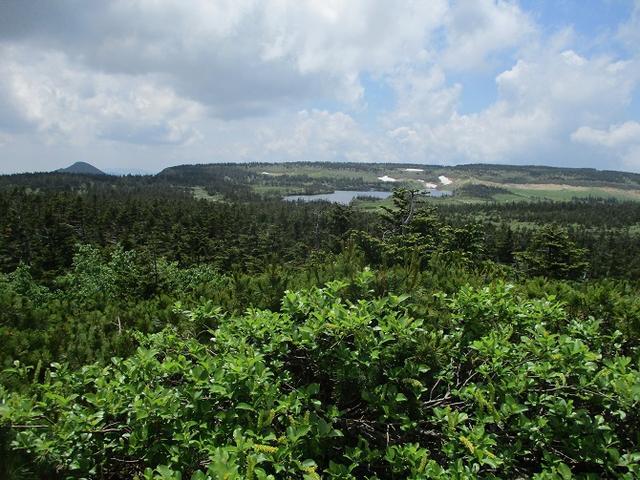 画像6: 7月の山旅会「八幡平・八甲田山・森吉山」のツアーの下見に行ってきました!