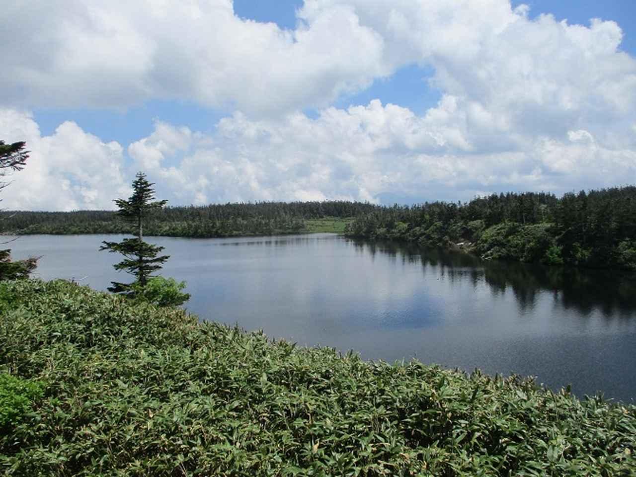 画像8: 7月の山旅会「八幡平・八甲田山・森吉山」のツアーの下見に行ってきました!