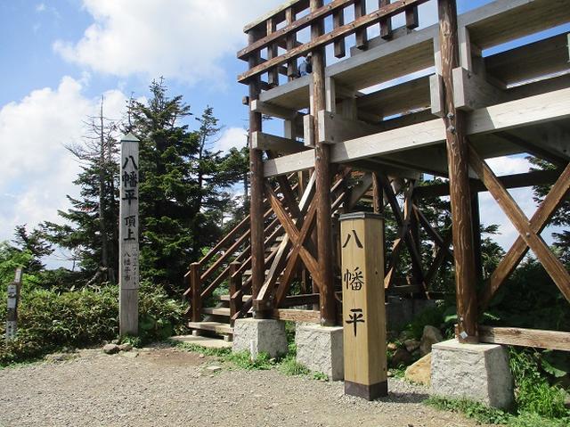 画像9: 7月の山旅会「八幡平・八甲田山・森吉山」のツアーの下見に行ってきました!