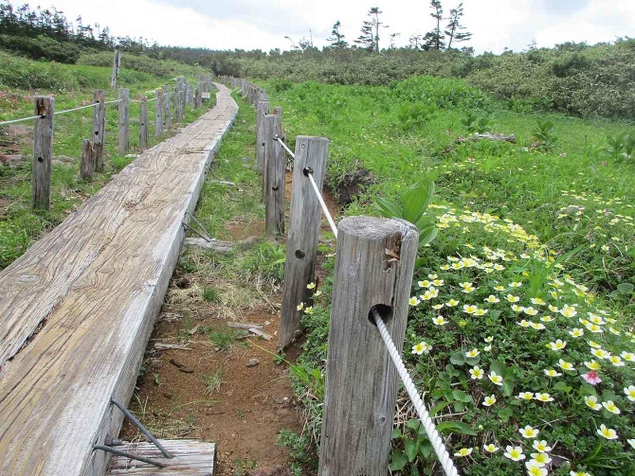 画像7: 7月の山旅会「八幡平・八甲田山・森吉山」のツアーの下見に行ってきました!