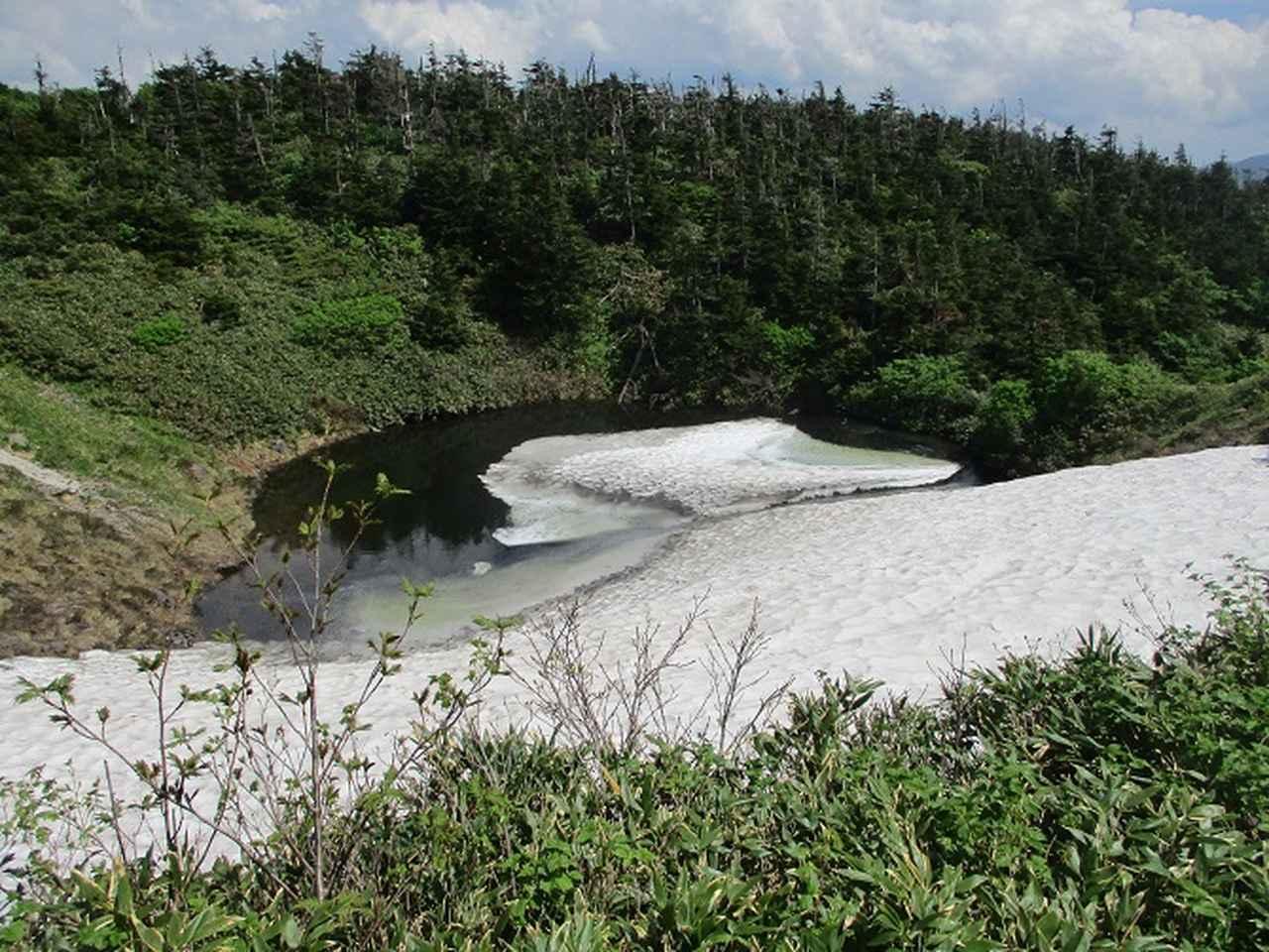 画像10: 7月の山旅会「八幡平・八甲田山・森吉山」のツアーの下見に行ってきました!