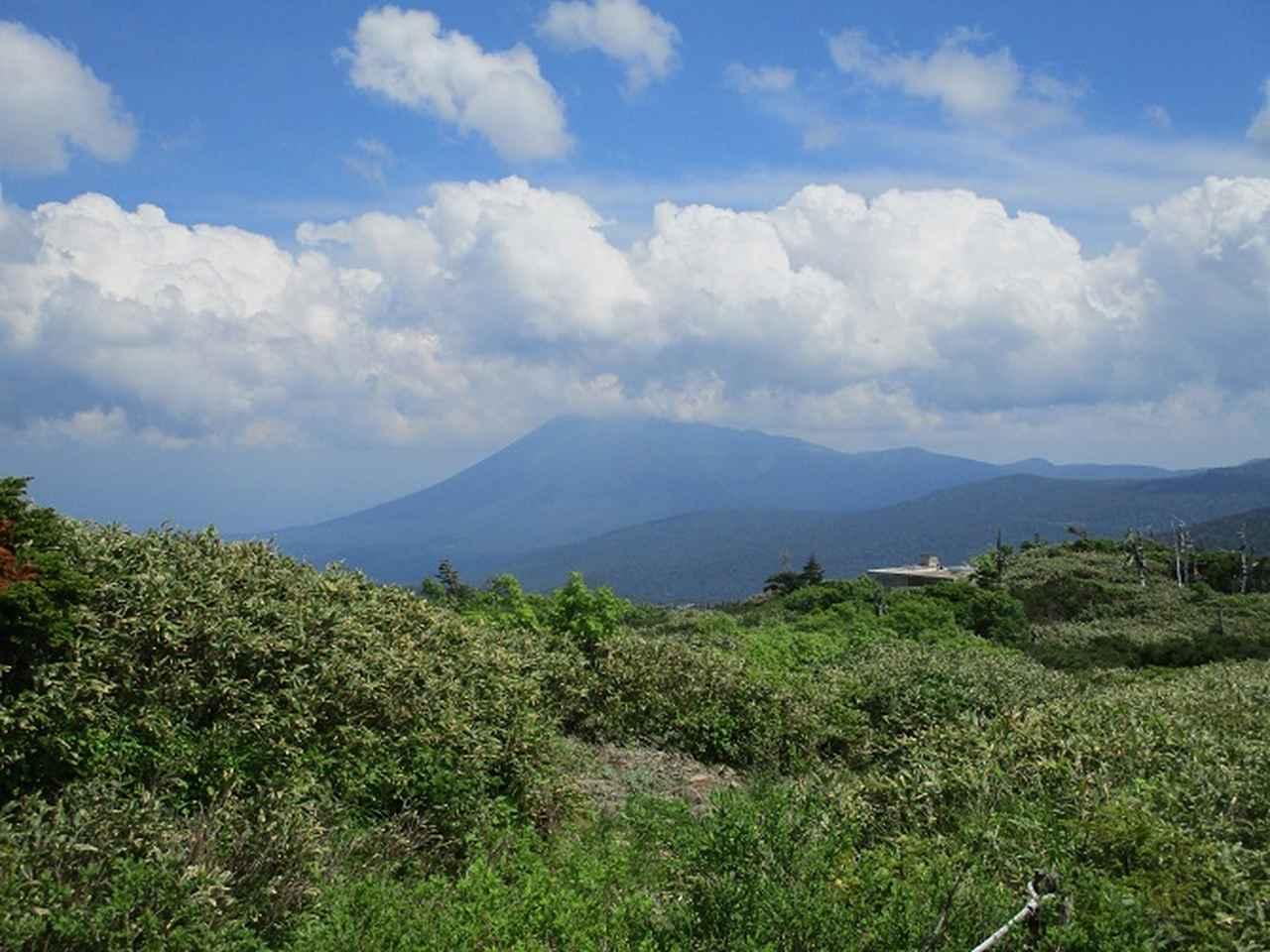 画像12: 7月の山旅会「八幡平・八甲田山・森吉山」のツアーの下見に行ってきました!
