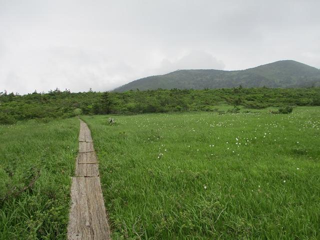 画像3: 7月の山旅会 「八幡平・八甲田山・森吉山」 ツアーの下見に行ってきました!