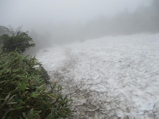 画像7: 7月の山旅会 「八幡平・八甲田山・森吉山」 ツアーの下見に行ってきました!