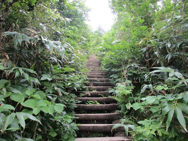 画像5: 7月の山旅会 「八幡平・八甲田山・森吉山」 ツアーの下見に行ってきました!