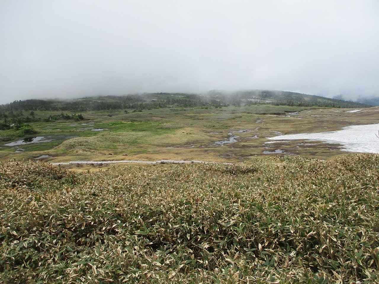 画像10: 7月の山旅会 「苗場山」 ツアーの下見にいってきました!