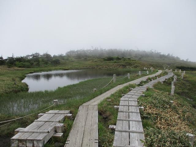 画像9: 7月の山旅会 「苗場山」 ツアーの下見にいってきました!