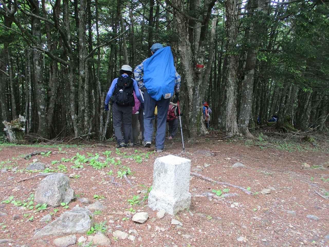 画像4: 7月2日に岡田ガイドのコースで山梨県にたたずむ櫛形山へいってきました♪