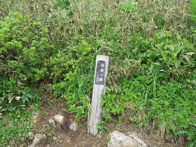 画像5: 7月の山旅会 「苗場山」 ツアーの下見にいってきました!