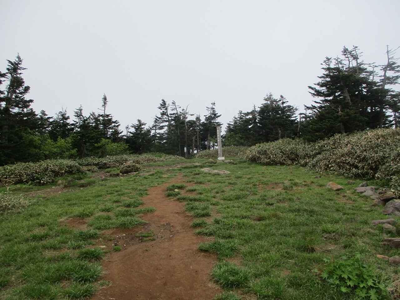 画像11: 7月の山旅会 「苗場山」 ツアーの下見にいってきました!