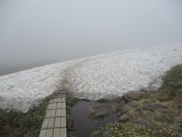 画像8: 7月の山旅会 「苗場山」 ツアーの下見にいってきました!