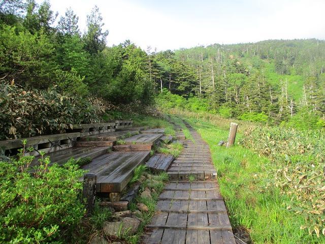 画像3: 7月の山旅会 「苗場山」 ツアーの下見にいってきました!
