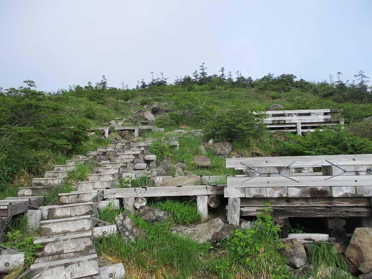 画像4: 7月の山旅会 「苗場山」 ツアーの下見にいってきました!
