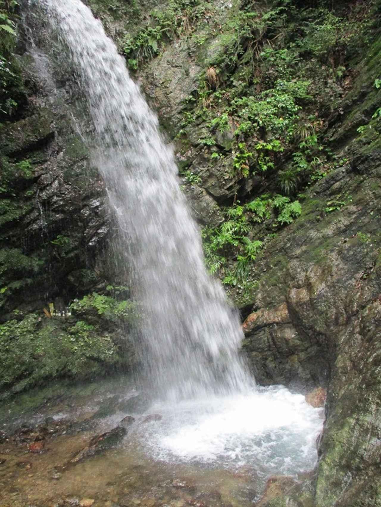 画像8: 7月6日に山旅会現地集合 「関八州見晴台から黒山三滝」 ツアーにいってきました!