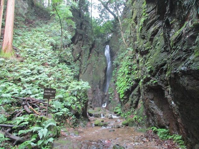 画像7: 7月6日に山旅会現地集合 「関八州見晴台から黒山三滝」 ツアーにいってきました!