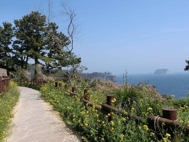 画像: 『ウェドルゲ海岸線コース』は植物も楽しめます