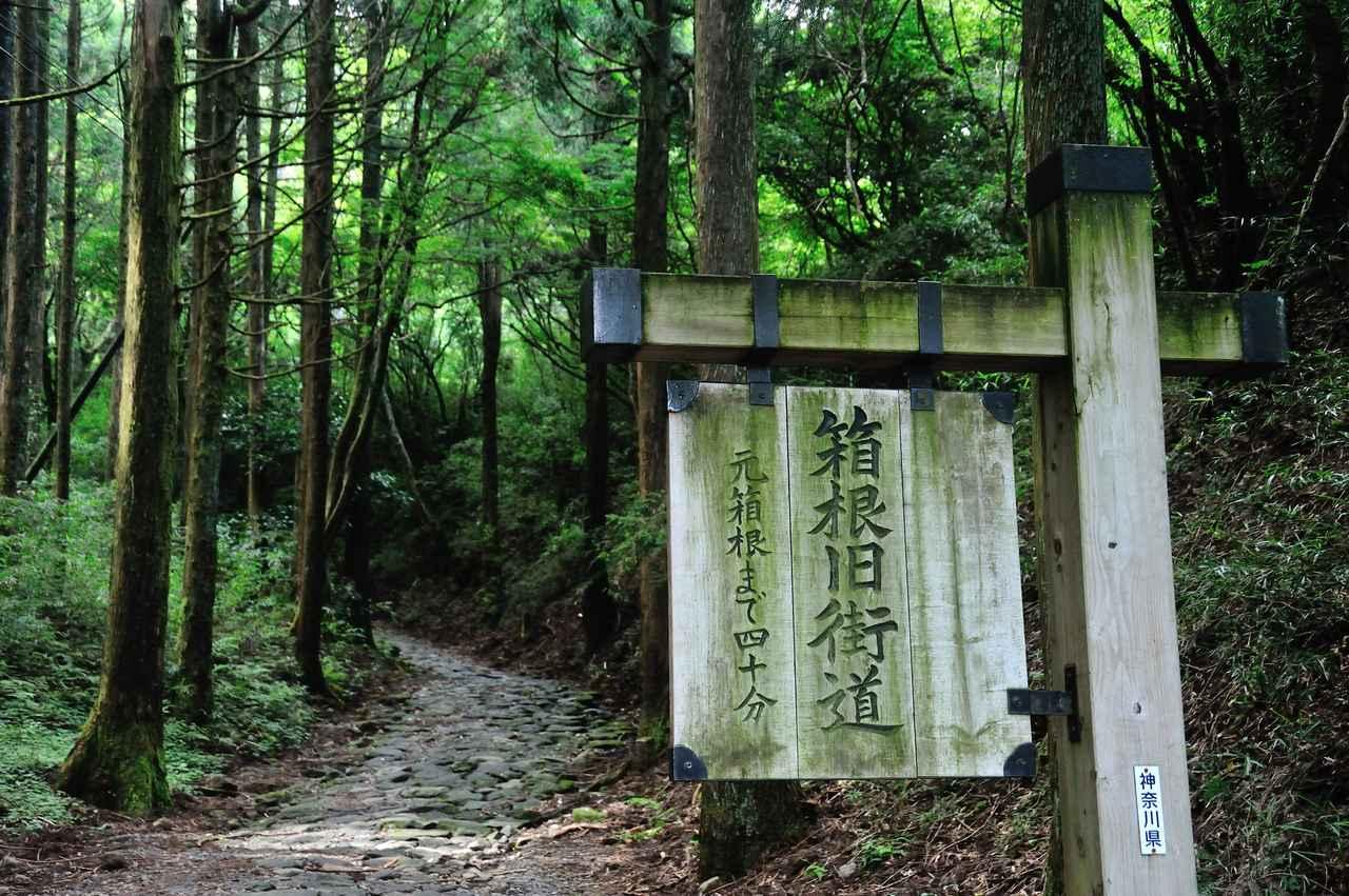 画像: 箱根峠 石畳の道の入り口。