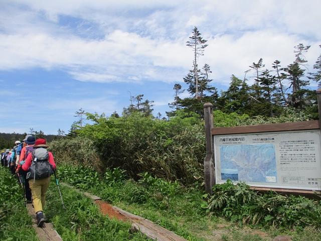 画像2: 7月9日から11日で岡田ガイドと東北の花の名山をめぐるに行ってきました!