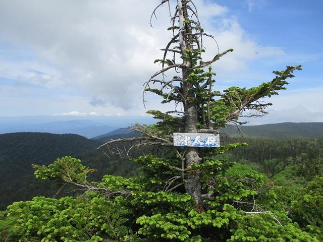 画像9: 7月9日から11日で岡田ガイドと東北の花の名山をめぐるに行ってきました!