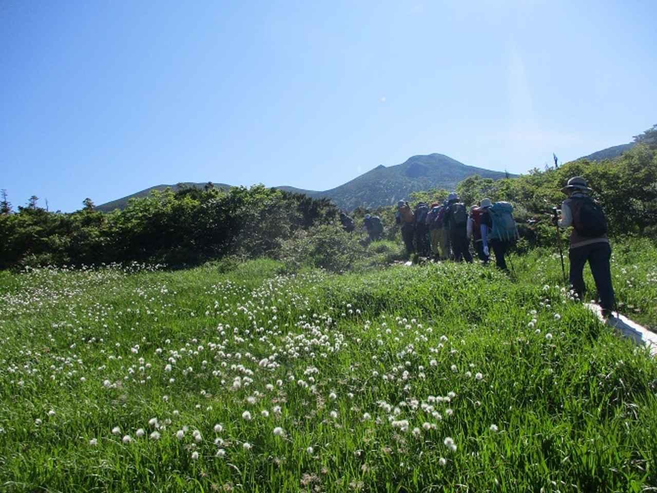 画像12: 7月9日~11日で八幡平・八甲田山・森吉山ツアーにいってきました!