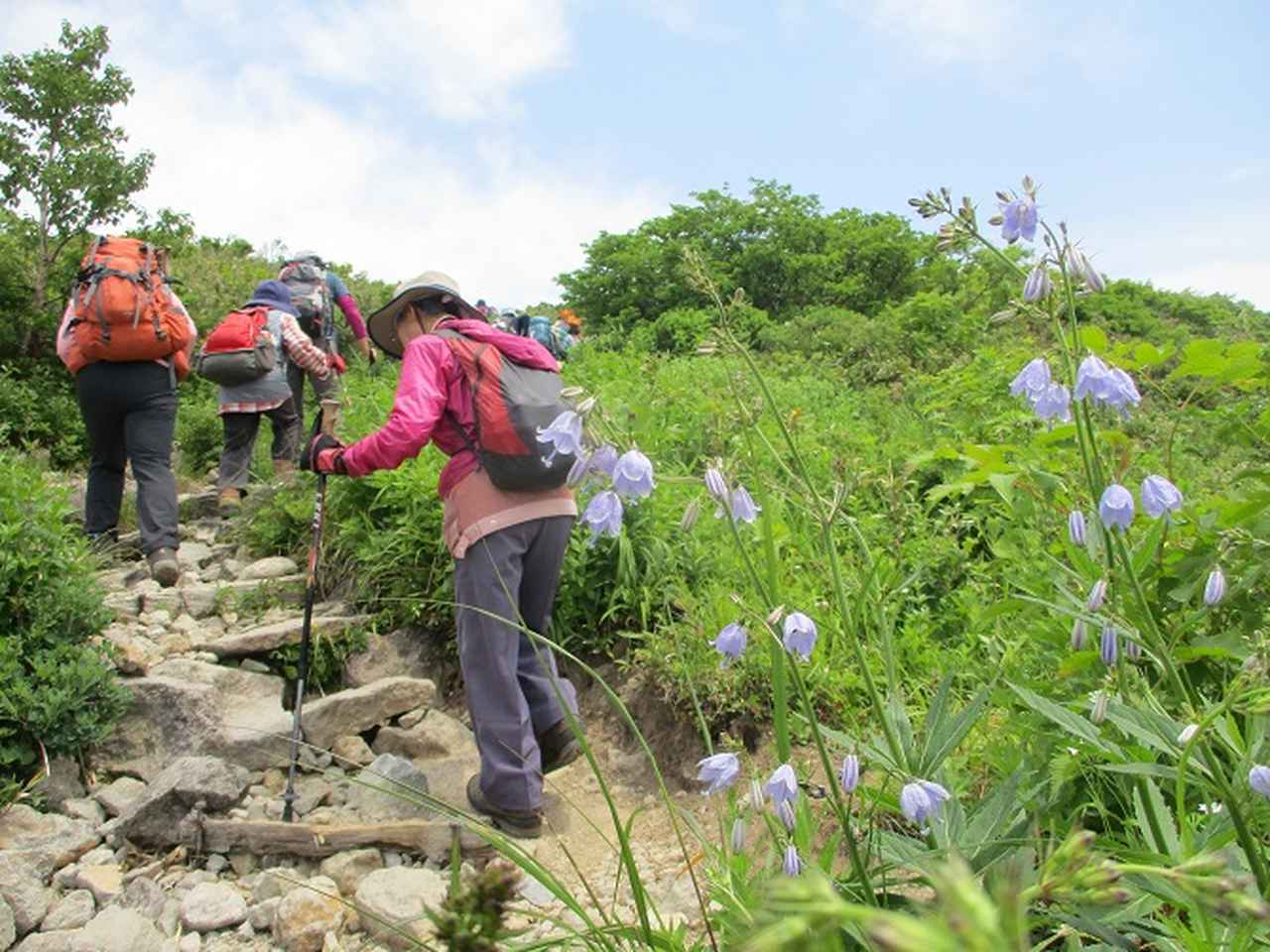 画像8: 7月9日~11日で八幡平・八甲田山・森吉山ツアーに行ってきました!