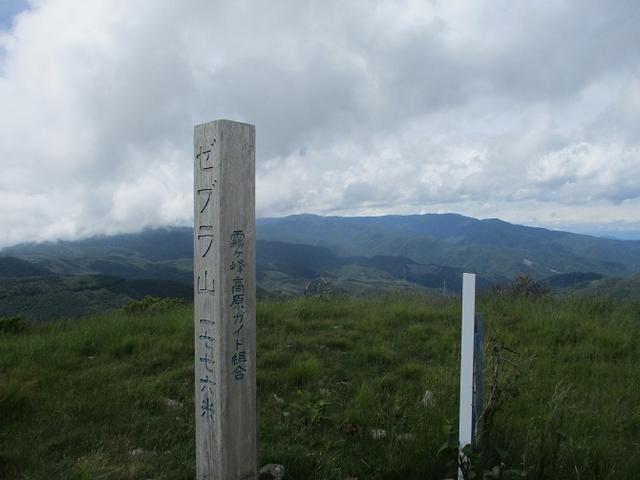 画像10: 7月12日に岡田ガイドのハイキングコースで 霧ヶ峰の男女倉山 へ行ってきました♪