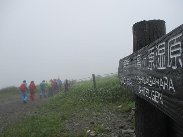 画像1: 7月12日に岡田ガイドのハイキングコースで 霧ヶ峰の男女倉山 へ行ってきました♪