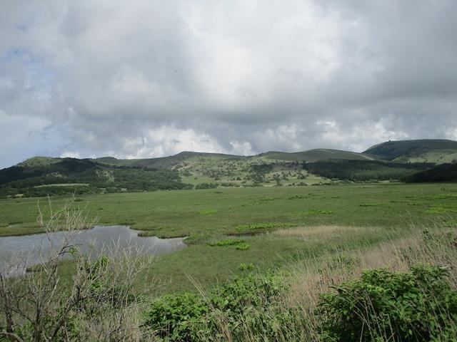 画像15: 7月12日に岡田ガイドのハイキングコースで 霧ヶ峰の男女倉山 へ行ってきました♪