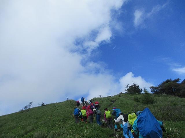 画像6: 7月12日に岡田ガイドのハイキングコースで 霧ヶ峰の男女倉山 へ行ってきました♪