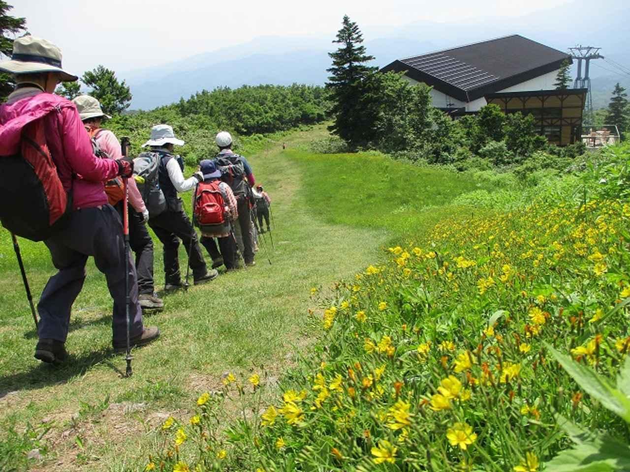 画像14: 7月9日~11日で八幡平・八甲田山・森吉山ツアーに行ってきました!