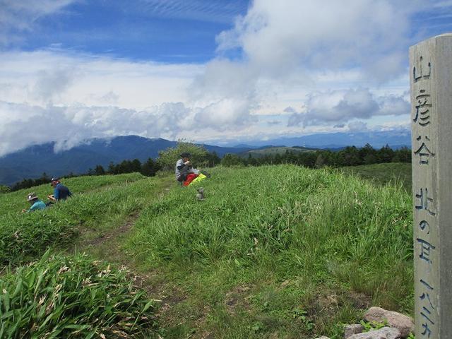 画像9: 7月12日に岡田ガイドのハイキングコースで 霧ヶ峰の男女倉山 へ行ってきました♪