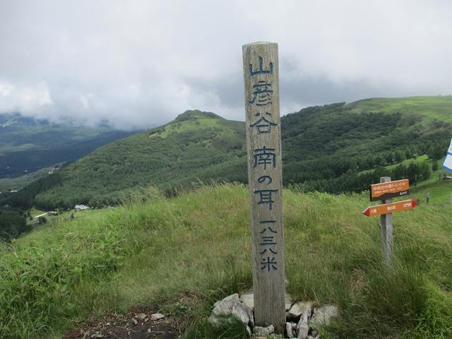 画像7: 7月12日に岡田ガイドのハイキングコースで 霧ヶ峰の男女倉山 へ行ってきました♪