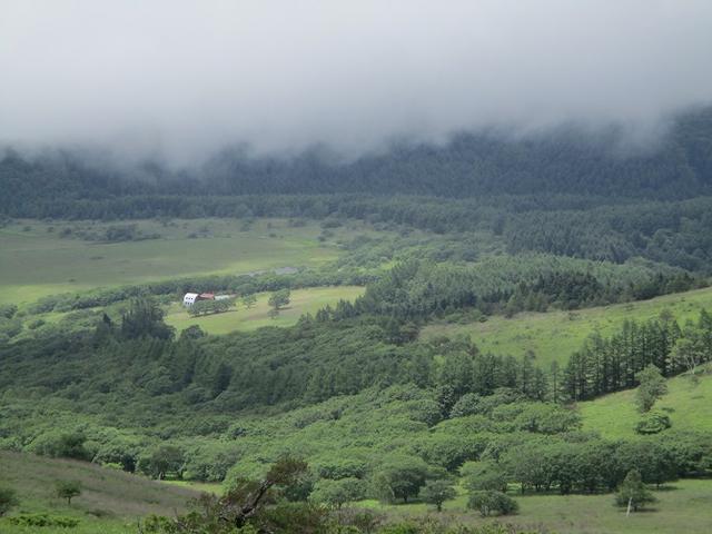 画像8: 7月12日に岡田ガイドのハイキングコースで 霧ヶ峰の男女倉山 へ行ってきました♪