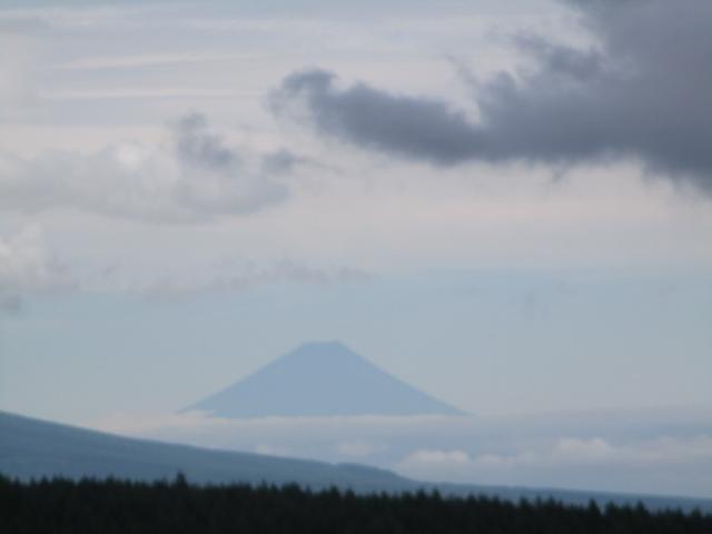 画像16: 7月12日に岡田ガイドのハイキングコースで 霧ヶ峰の男女倉山 へ行ってきました♪