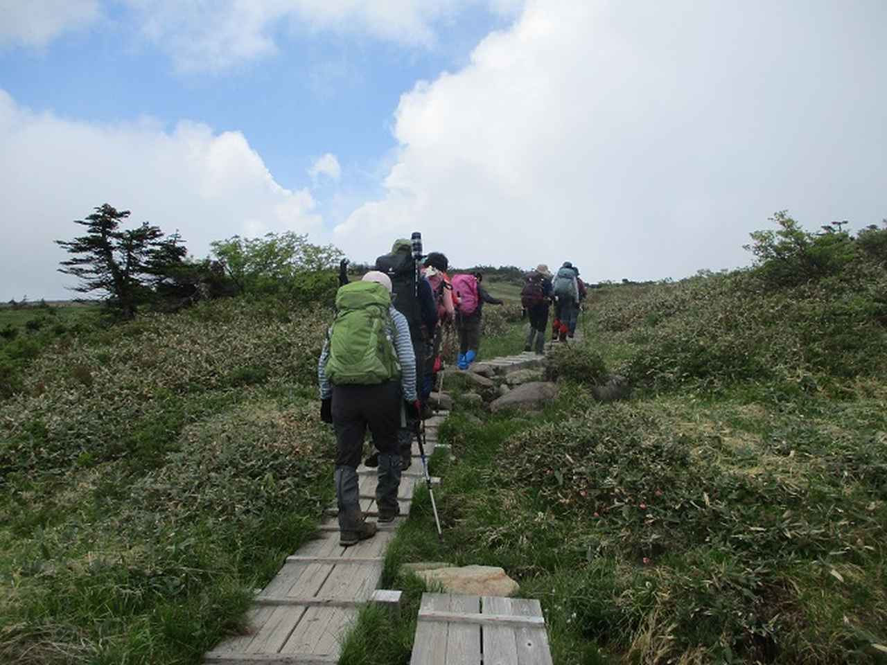 画像6: 7月16日より2泊で山旅会 「三国山と苗場山」 ツアーに行ってきました!