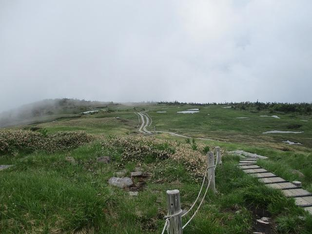 画像7: 7月16日より2泊で山旅会 「三国山と苗場山」 ツアーに行ってきました!