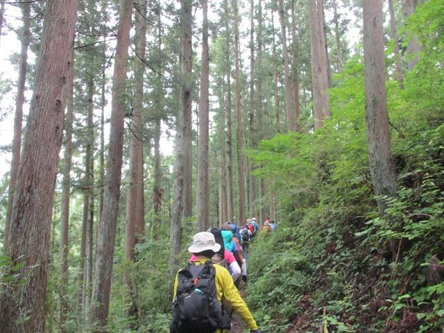 画像2: 7月13日に岡田ガイドの現地集合コースで、 陣馬山 へ行ってきました♪