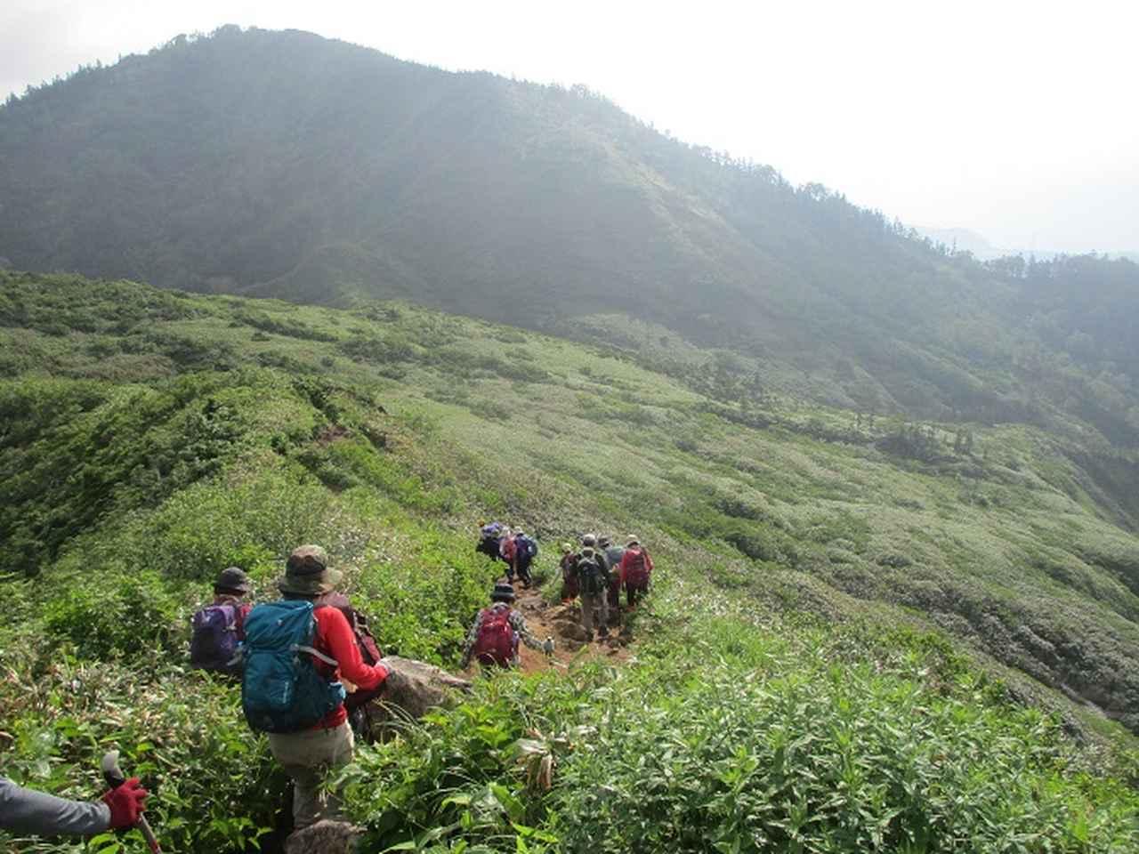 画像12: 7月16日より2泊で山旅会 「三国山と苗場山」 ツアーに行ってきました!