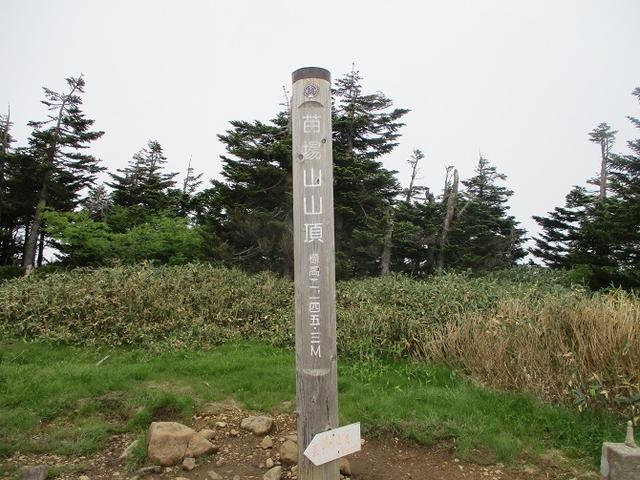 画像8: 7月16日より2泊で山旅会 「三国山と苗場山」 ツアーに行ってきました!
