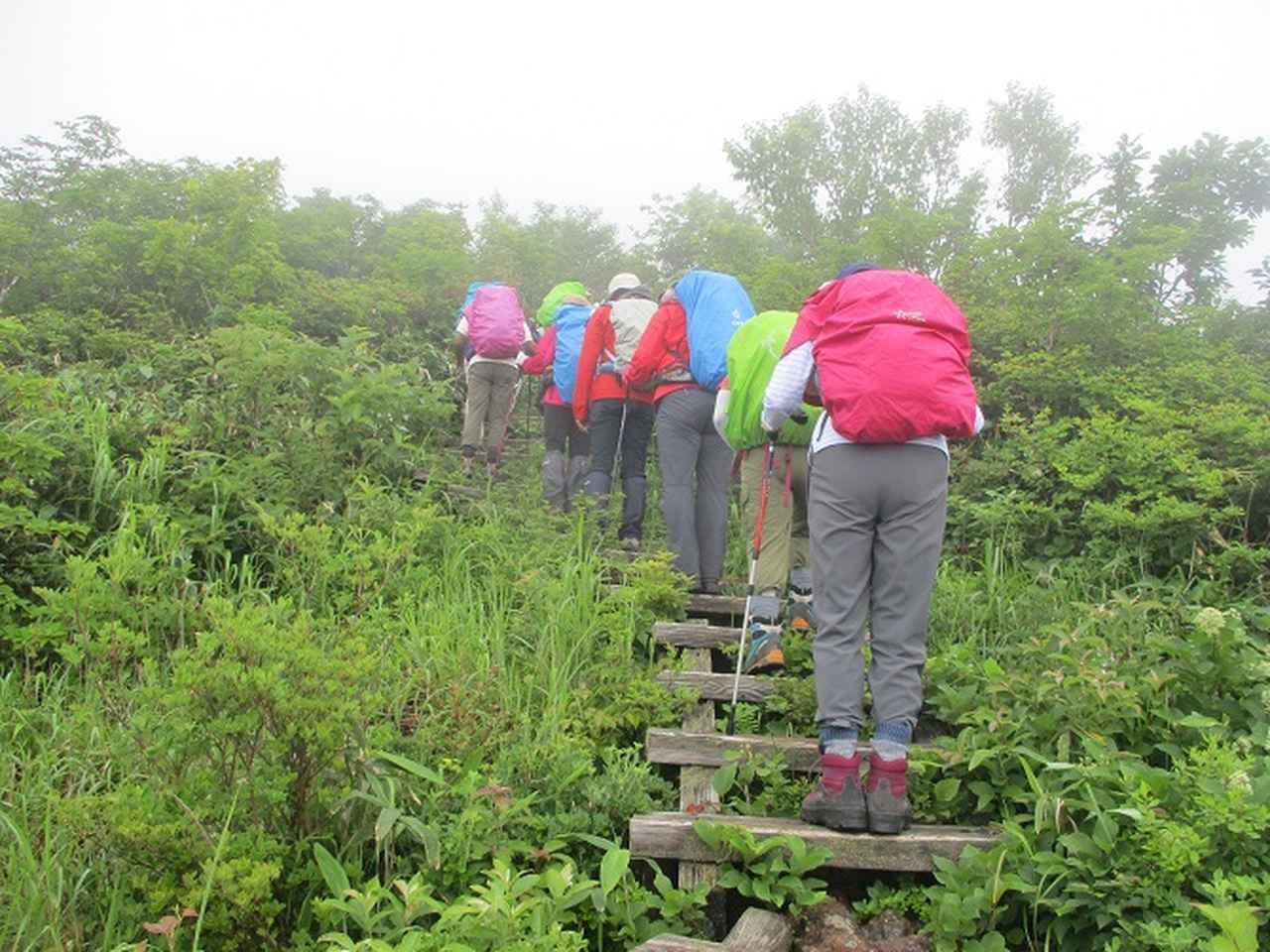 画像3: 7月16日より2泊3日で山旅会 「三国山と苗場山」 ツアーに行ってきました!